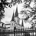 Cathedral Basilica - Square Bw by Scott Pellegrin