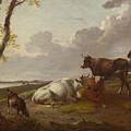 Cattle by PixBreak Art