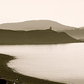 Cattle Point Lighthouse San Juan Island by Sandy Buckley