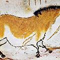 Cave Art: Lascaux by Granger