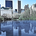 Central Park In New York City by Svetlana Sewell