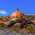 Ceramic Pumpkin On A Roof by Jose Coelho