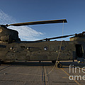 Ch-47 Chinook Helicopter On The Tarmac by Terry Moore