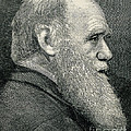 Charles Darwin, English Naturalist by Wellcome Images