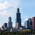 Chicago Skyline by Cindy Kellogg