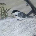 Chickadee by Rebecca  Fitchett