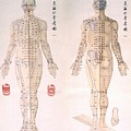 Chinese Chart Of Acupuncture Points by Everett
