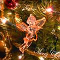Christmas Angel by Anastasia Michaels