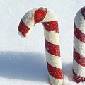 Christmas Candy Canes On Real Snow by Isabelle Haynes