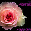 Christmas Greetings by Jijo George