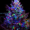 Christmas Tree by Tamara Sushko