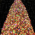 Christmas Tree by Will Wagner