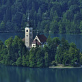 Church Of Mary On Bled Island by Don Wolf