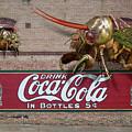 Cicada Turf War by Bob Sanford