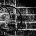Circle by Bob Orsillo