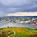 Cityscape Of Saint John's From Signal Hill by Elena Elisseeva
