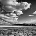 Cloud Play by Louis Dallara