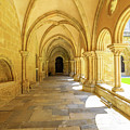 Coimbra Cathedral Colonnade by Benny Marty
