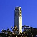 Coit Tower by Michiale Schneider
