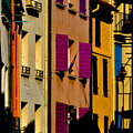 Collioure Street by K C Lynch