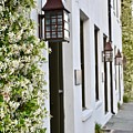 Colonial Home Exterior With Vertical Plants And Old Lanterns Displayed On The Side Of Home by Jeramey Lende
