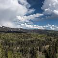 Colorado Beauty by Mountain Dreams