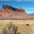Colorado Canyon Country by Jim West