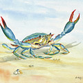 Colorful Blue Crab by Melly Terpening
