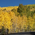 Colors Of Colorado #2 by Dennis House