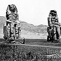 Colossi Of Memnon, Valley Of The Kings by Science Source