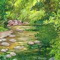 Coromandel Creek by Val Stokes