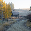 Country Morning by Idaho Scenic Images Linda Lantzy