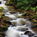 Creek Water by Jill Lang
