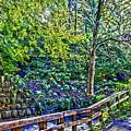 Creekside by William Norton