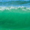 Cresting Wave by Paula Porterfield-Izzo