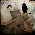 Cross With Crow by Gothicrow Images