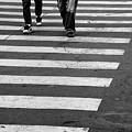 Crossing by Gabriela Insuratelu