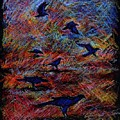 Crows by Glenn Boyles