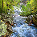 Cullasaja Falls by Andy Crawford