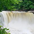 Cumberland Falls by Jill Lang