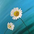 Daisy Duo by Nancy Sisco