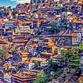 Darjeeling by Steve Harrington