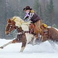 Dashing Through The Snow by Jack Bell