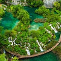 Dave Ruberto - Wonderful Green Nature Waterfall Landscape  by Dave Ruberto