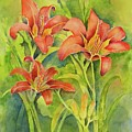 Day Lilies by Kristen Anderson Hill