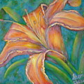 Day Lily  by Sheri Hubbard