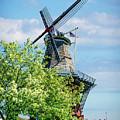 De Zwaan Windmill by Nick Zelinsky