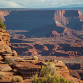 Dead Horse Point by Amber Bird