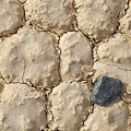 Death Valley Mud by Breck Bartholomew