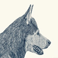 Decorative Digital Sketch, Man's Best Friend A7116 by Mas Art Studio